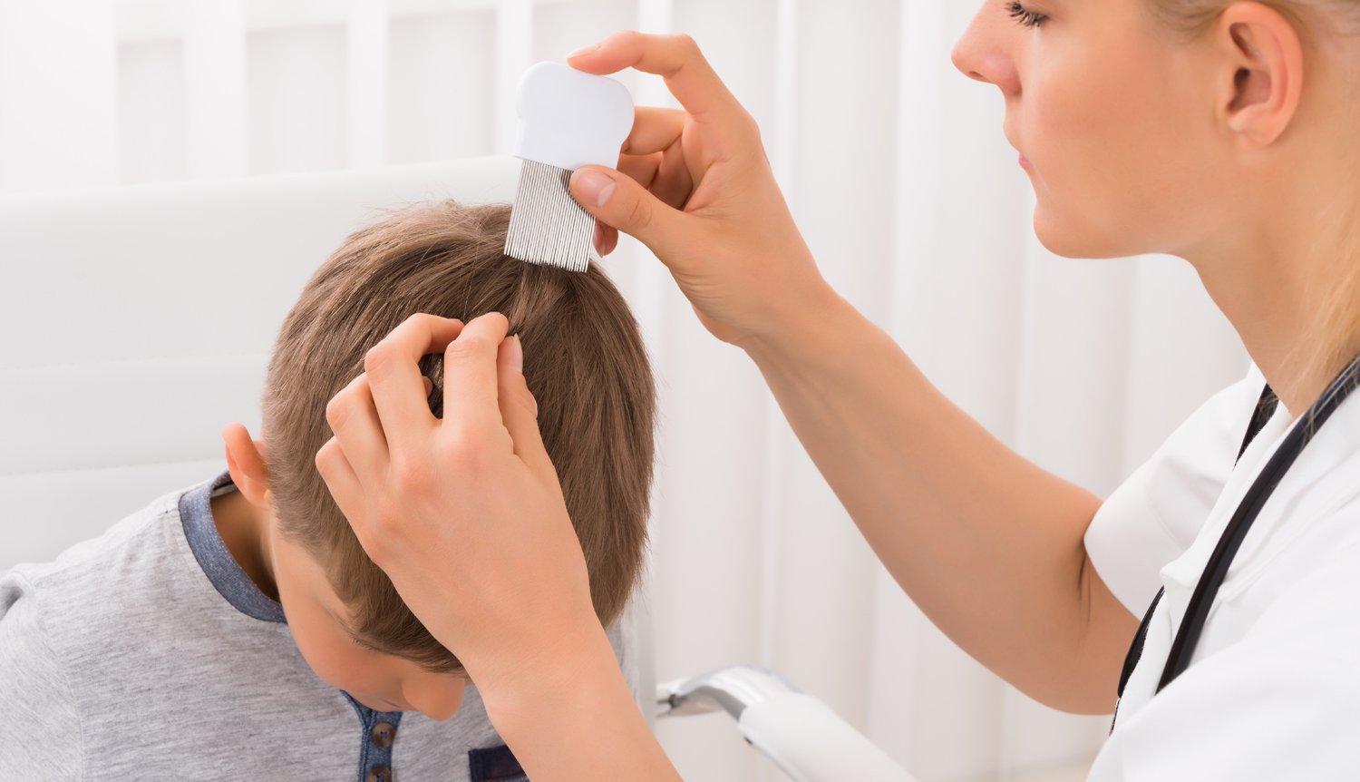 Lice Treatment Removal Broward County
